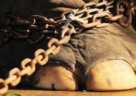 filler, şema terapi